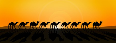 line of camels in fron of burning sun in savanna desert