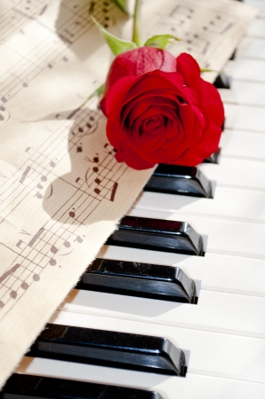 red rose on piano keyboard and notes sheet