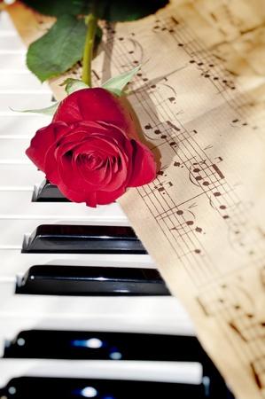 piano closeup: red rose on piano keyboard and notes sheet