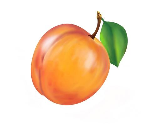 juicy nectarine isolated on white
