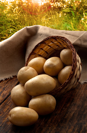 group of fresh potatoes  close-up