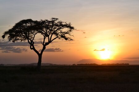 kenya: sunset in kenya Stock Photo