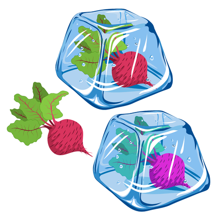 Frozen beetroot in ice cube isolated on white background Illustration
