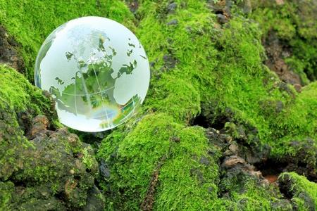 生態学のイメージ