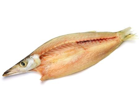 barracuda: dried fish of barracuda Stock Photo