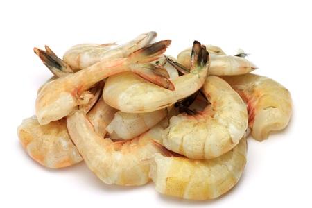 crustacea: shrimp
