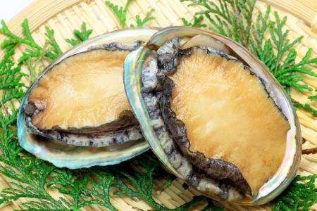 fishery products: abalone  Stock Photo