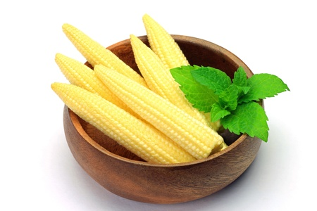 young corn Stock Photo