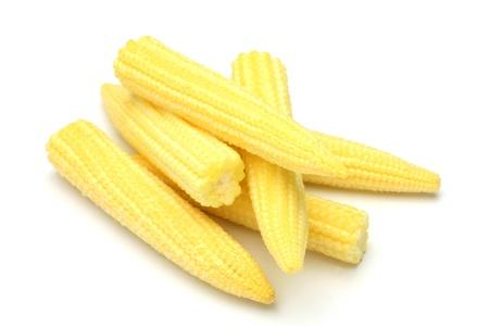 年輕的玉米