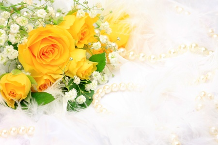 yellow rose: rose and pearl  Stock Photo