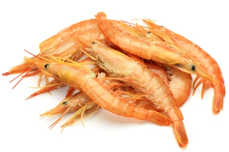 fishery products: red shrimp  Stock Photo