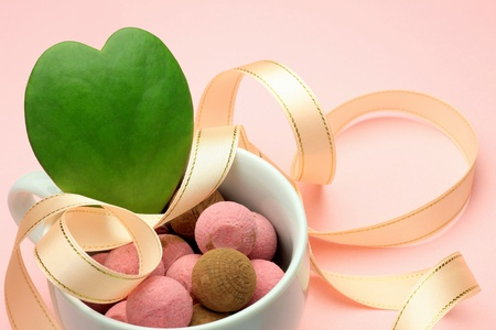 expressed: By heart-shaped cactus and chocolate I expressed Valentine