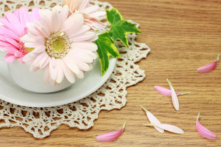 barberton daisy: I put gerbera in a teacup and made the accent of the dining table  Stock Photo