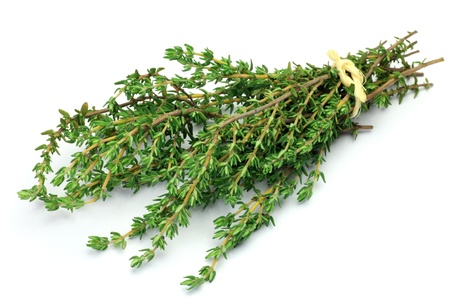 spicy plant: This is fresh herb  I bundled up thyme and took it in a white background