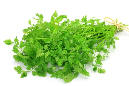 I took chervil in a white background  Stock Photo