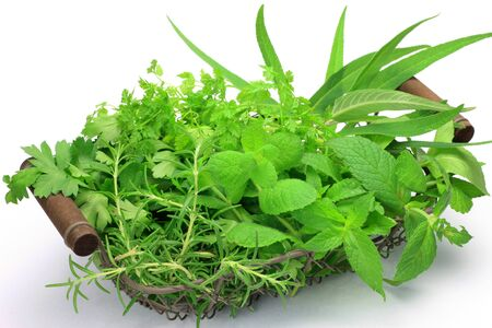 various herb in a basket and took it in a white background  photo