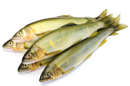 fishery products: I took raw sweetfishes in a white background