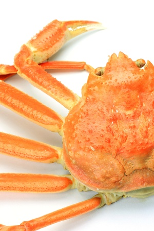 fishery products: boiled snow crab Stock Photo