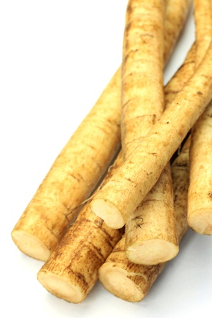 This is a Japanese burdock. Stock Photo