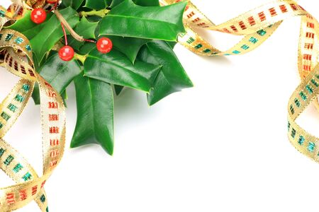 chinese holly: I imaged Christmas with ribbon and a plant.
