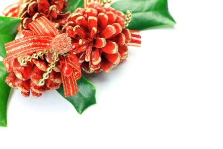 chinese holly: I imaged Christmas with various ornaments and hollies.