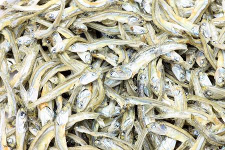 sardinas: peque�as sardinas secas Foto de archivo