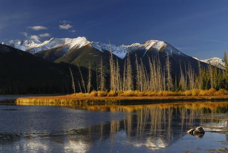 gold capped: First Light at sunrise on First Vermilion Lake in the Fall
