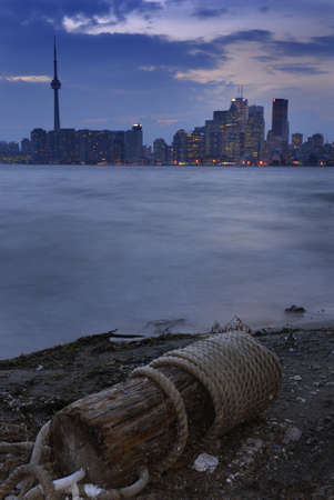 beached: Beached floatsam on the Toronto Island with dusk cityscape