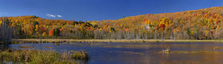 Panorama of a lake in the Fall with colorful leaves