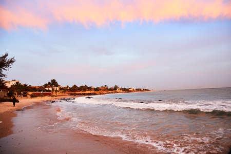 書きません、ダカール、セネガル沿岸のビーチの一つでヤシの木 写真素材