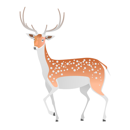 Elegant deer on a white background. Vector isolated animal