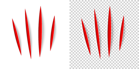 Claws animal scratches on transparent background. Vector realistic red cut with a office knife on paper sheet isolated. Claws animal scratches on transparent background.