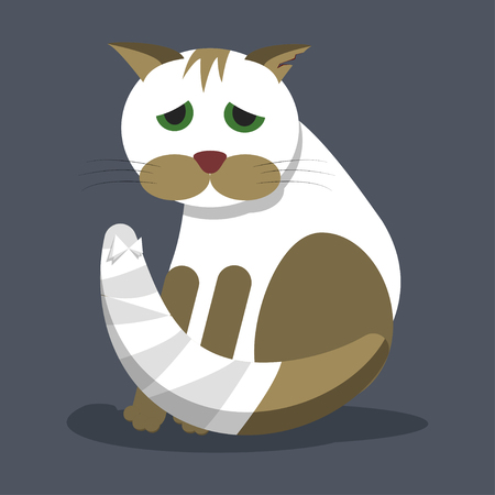 A wounded homeless cat cat with a bandaged tail and a torn ear. Vector illustration in a flat style. Banque d'images