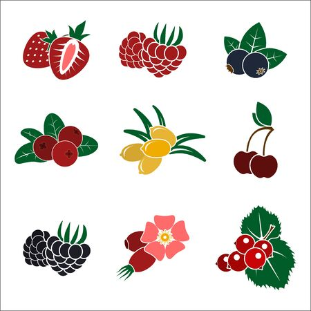 Set of color stylized berries icons. Flat isolated vector objects. Illustration