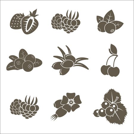 Set of monochrome stylized berries icons. Flat isolated vector objects. Illustration