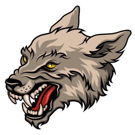 白で隔離される怒っているオオカミの頭部、カラフルなベクトル図  イラスト・ベクター素材