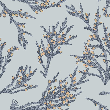 pine needle: hand drawn juniper s branches on grey background  Seamless pattern
