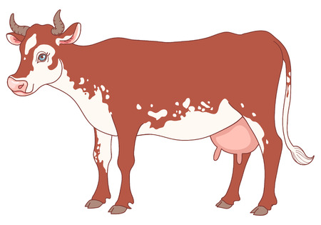 Cute cow character isolated on white.   Vector