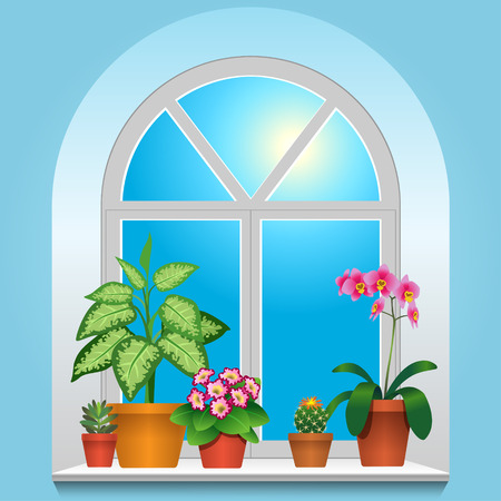 Some houseplants on window. View inside room.