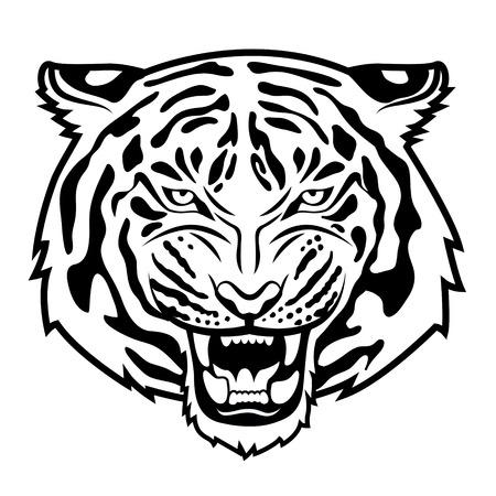 tigre blanc: La tête de tigre rugissant isolé sur blanc