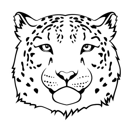 Snow leopard s head isolated on white  Ilustrace