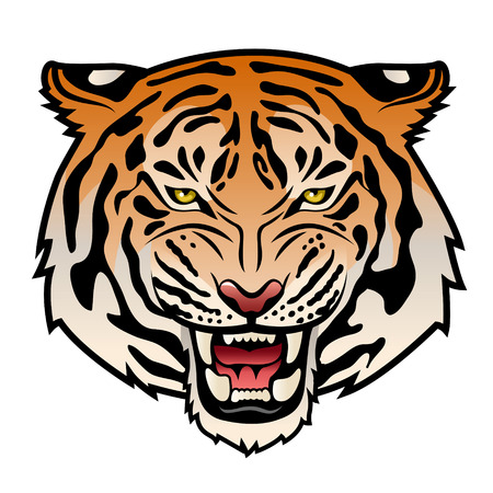 Roaring tiger s head isolated on white  Color vector illustration Stock Illustratie
