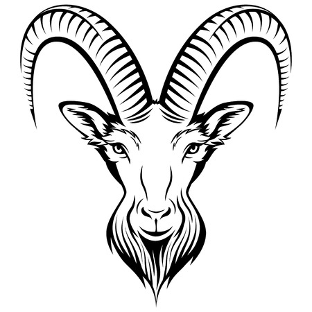 Stylizing Goats head isolated on white. Black and white  illustration  Vector