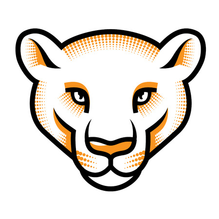 Stylized pumas head isolated on white. Vector illustration  Illustration