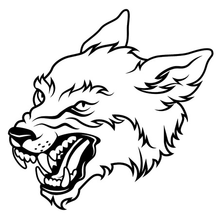 Angry wolf head, vector illustration isolated on white