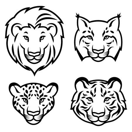 lince: Conjunto de cabezas de felinos estilizados aislados en blanco. Ilustración vectorial