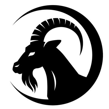Stylizing Goats head isolated on white. Black and white  illustration  Vector