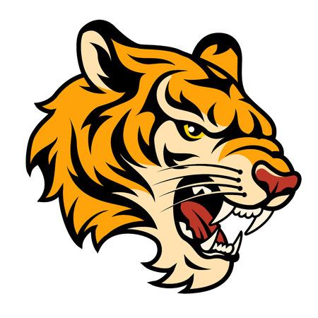 Roaring testa di tigre isolato su bianco. Colore illustrazione vettoriale Archivio Fotografico - 31493229