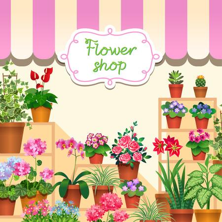 Houseplants in show-window of flower shop.  Illustration