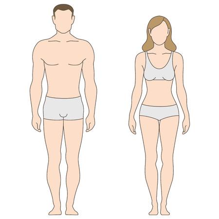 cuerpos desnudos: Figuras de hombre y mujer. La plantilla para su diseño Vectores